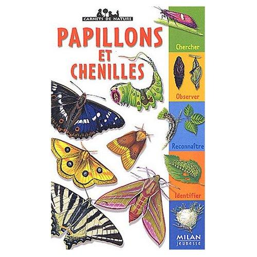 papillons-livre-enfant
