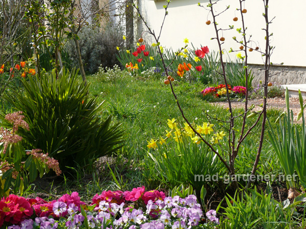 massif-fleuris